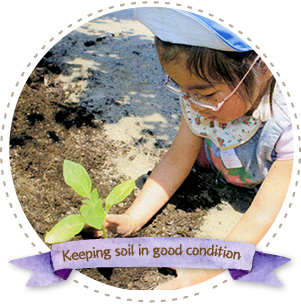 Keeping soil in good condition